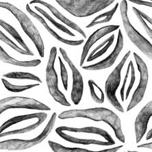 V-Flowers – Pattern Exploration